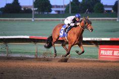 Prairie Meadows Casino Horse Racing Track! Love it!