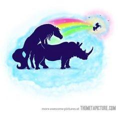 How Unicorns are born!