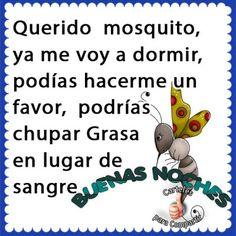 Querido mosquito me voy a dormir