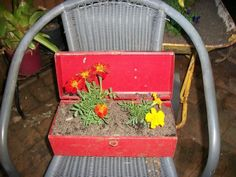 Recycled tool box into planter