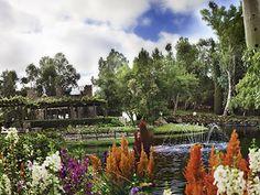 Vitagliano Vineyards and Winery at Lake Oak Meadows Temecula California Wedding Venues 8