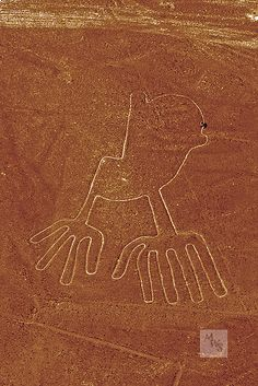 As seen from the air a person walking on an Owl hieroglyph, Nasca Lines,PERU
