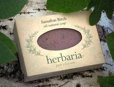 Sassafras Birch Soap-- this, on the other hand, sounds pretty awesome