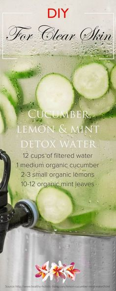 Best Detox Cleanse - DIY Skin Cleanse Find the best detox cleanse for the new year here: http://newpathnutrition.com/health-wellness-tips-2016-best-detox-cleanse/