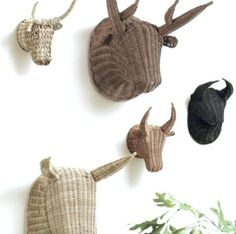 The only kind of horned animals we should mount on our walls !!