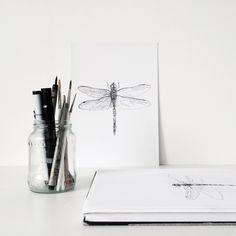 Libelle tekening | Dragonfly work in progress
