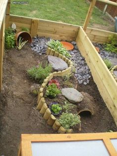 I have seen numerous suggestions for Russian tortoise diet Some great Some awful. Russian Tortoises are nibblers and appreciate broad leaf plants. Tortoise House, Tortoise Habitat, Tortoise Table, Baby Tortoise, Turtle Enclosure, Rabbit Enclosure, Reptile Enclosure, Rabbit Playground, Outdoor Playground