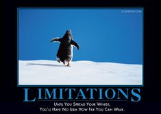 """""""Limitations: Until you spread your wings, you'll have no idea how far you can walk."""""""