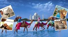 Golden Triangle Tour Packages are excellent tour program provides best travel journey with your budget. Visit here: http://www.scribd.com/doc/301423879/Awesome-Golden-Triangle-Tour-Package-with-impressive-Holidays