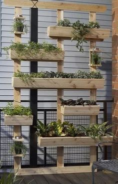 They are everywhere,  wooden pallets.  Why not upcyle something old into a modern vertical herb garden? #verticalfarming