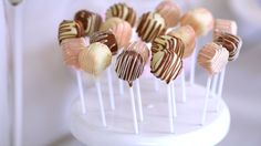 Brownie Pops - Dense, fudgy brownie coated in chocolate... gives cake pops a run for their money