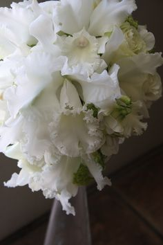 bouquet of pure white orchids