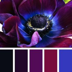 Уроки стиля! Как научиться сочетать цвета и оттенки красиво?