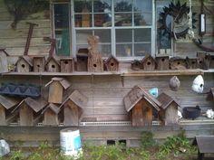 birdhouse neighborhood