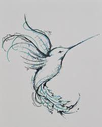 hummingbird drawings - Google Search
