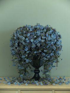 Fleurs Tremolo Yukinobu Fujino