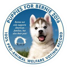 #animalwelfare #puppies #berniesanders #feelthebern