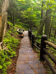 Along the Doughboy's Trail - Copper Falls State Park WI
