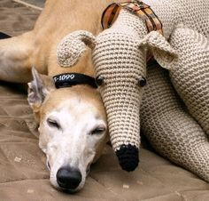 Greyhounds this makes me want to learn to crotchet.
