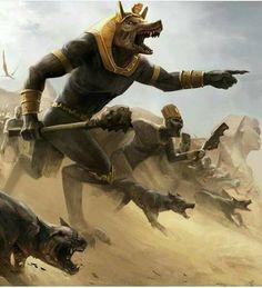 Dogs war