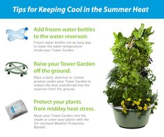 Keep your Tower Garden's water temperature at the recommended 85 degrees or below with these tips.