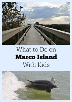 What to do on Marco Island with Kids