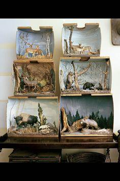 little dioramas
