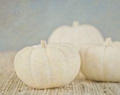 Pumpkin Photography Fall Home Decor Rustic by PureNaturePhotos