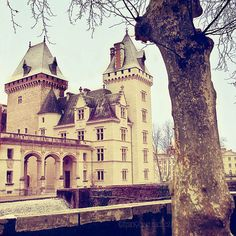 Chateau de Pau (Pau, Aquitaine, France) I'm going to see this the week after next!!! :-D