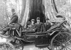 [Men from the Japanese Embassy in a carriage in front of the Hollow Tree] - City of Vancouver Archives 1890
