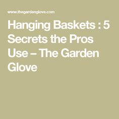 Hanging Baskets : 5 Secrets the Pros Use – The Garden Glove