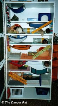 Better Holes and Garbage--Your Rat Housekeeping Resource. Lots of custom cages that could be modified for ferrets.