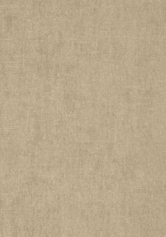 BELGIUM LINEN, Putty, T57126, Collection Texture Resource 5 from Thibaut
