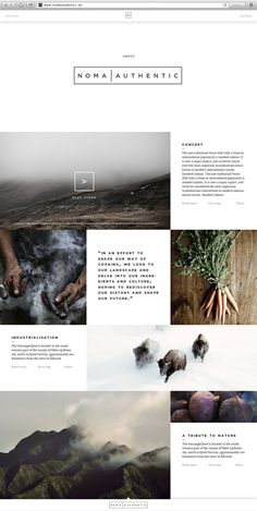 Noma Authentic | Website & App by Jonas Emmertsen, via Behance http://www.behance.net/gallery/Noma-Authentic-Website-App/7675951