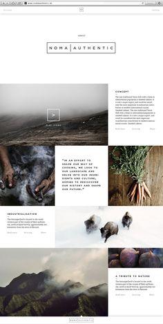 Noma Authentic | Website & App by Jonas Emmertsen, via Behance http://www.behance.net/gallery/Noma-Authentic-Website-App/7675951