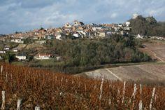 Vue sur Sancerre Domaine Eric Louis, Vins de Sancerre