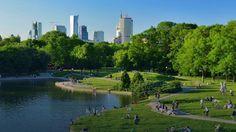 Green Warsaw.