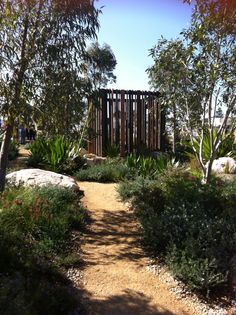 1000 images about courtyard garden on pinterest native for Courtyard landscaping australia