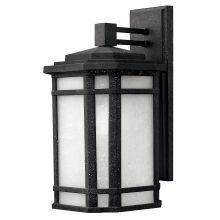 Hinkley Lighting 1274 GU24