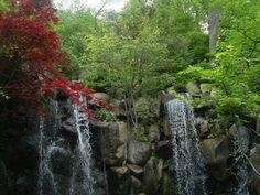 Anderson Japanese Garden West Waterfall