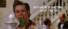 15 Jim Carrey Jokes Every Adolescent Boy Loved James Mcavoy, Colin O'donoghue, Heath Ledger, Tv Show Quotes, Movie Quotes, Funny Quotes, Funny Gifs, Matt Bomer, Norman Reedus