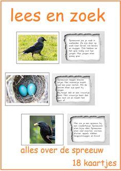 Thema 11. Goed te gebruiken bij Lijn 3 en Veilig Leren Lezen. De eeuw in spreeuw. Lees het kaartje en zoek het goede plaatje.