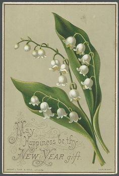 Victorian Raphael Tuck New Year Card with Lily of the Valley