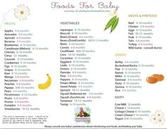 Solid Food Chart with ages