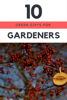 Useful and beneficial gifts for the greenest of thumbs.