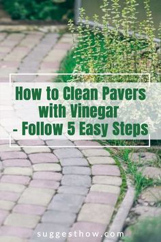 Keeping your pavers clean is an important part of paver maintenance. Dirt and grease can buildup and get into the gaps to make them look dirty. So, how do you clean pavers with vinegar? Although there are many ways, this is the best way to clean pavers efficiently. Follow these 5 steps guide for an amazing result. #homehacks #cleaning #DIY #home #cleaningwithvinegar Cleaning Diy, Cleaning Pavers, Deep Cleaning Tips, Bathroom Cleaning, How Do You Clean, Grease, Using Vinegar To Clean, Yoga For Flat Belly, Paver Stones