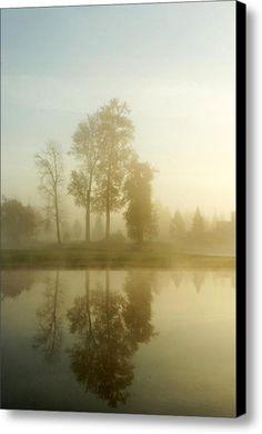 Foggy Morning Canvas Print / Canvas Art By Alexander Fedin