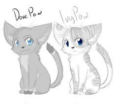 Dovepaw or ivypaw: like to vote dovepaw and comment DARK FOREST to vote ivypaw