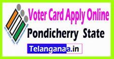 Best 25+ Online voter card apply ideas on Pinterest | Voter id card online, Voter id online ...