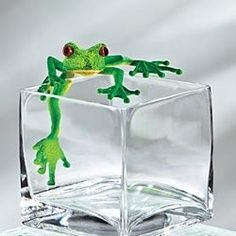 paperweight glass with frog in the shape of an ice cube is rather different!!